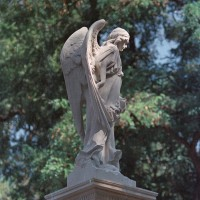 Ангел. Звіринецьке кладовище. Пісковик. Київ. 2019